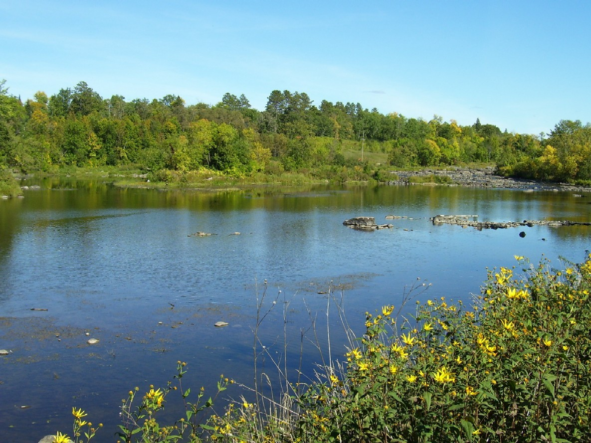 Minnesota lake property mn waterfront properties for sale for Northern wisconsin fishing resorts