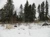 winter2016-051