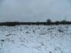 winter2016-055